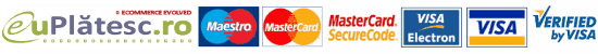 online visa mastercard