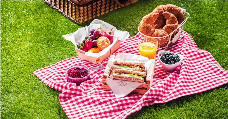 picnic patura